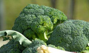 Brokolica – super zdravá bomba